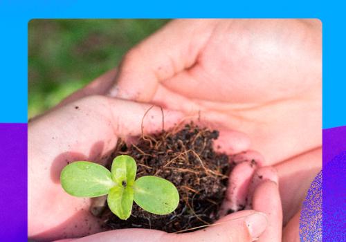 Dia do Técnico em Meio Ambiente: profissional é essencial para a sustentabilidade do planeta