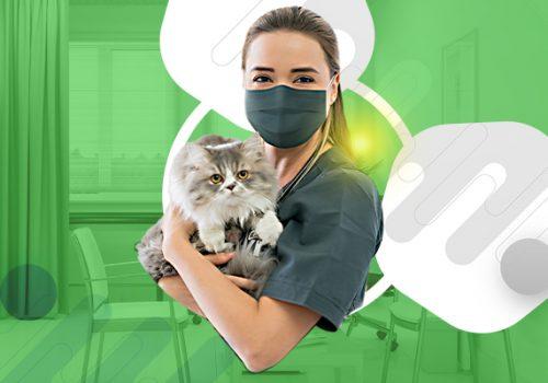 Dia do Médico Veterinário: saiba a importância do reconhecimento desse profissional